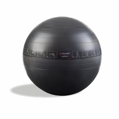 Gimnastikos-kamuolys-PURE-65cm